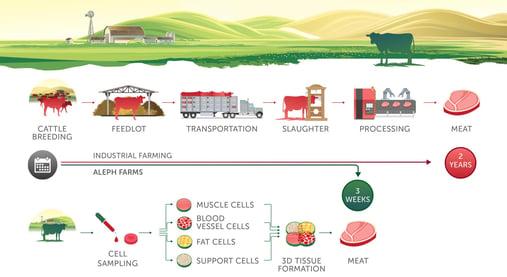 【開催報告】イスラエル培養肉スタートアップを囲んで、未来の食について考える会
